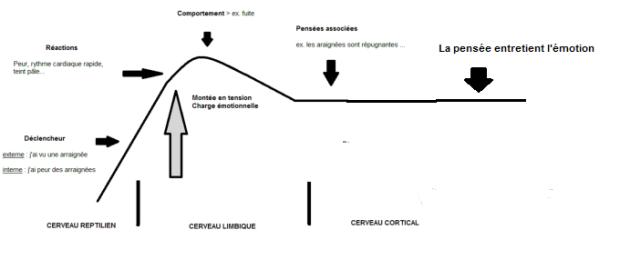 vague-c3a9motionnelle-normale3