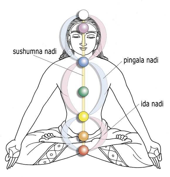 chakras-and-the-Nadi-man