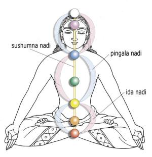 chakras-and-the-Nadi-man